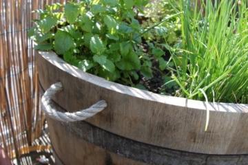 Altes Weinfass - Holzfass als Pflanzenkübel oder Kräuterbeet -4