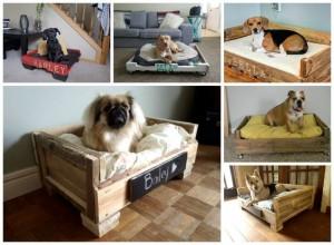 Hundebett-Hundekörbchen aus Paletten-Möbel